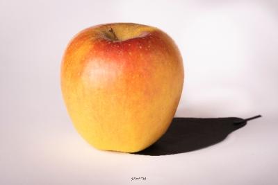 Des pommes et des poires - Magie de Forme