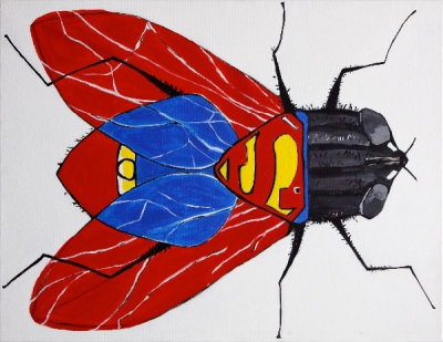 La Mouche à Superman - Richard Boigeol