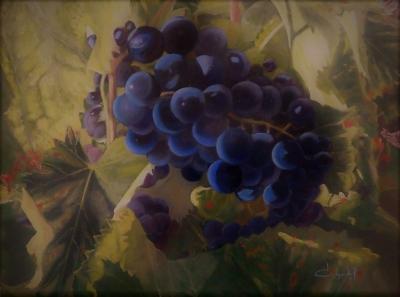 Raisins de Maubec 1 par Véronique DEGABRIEL