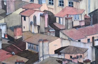 Toits de Lyon - Ludo Lassalle